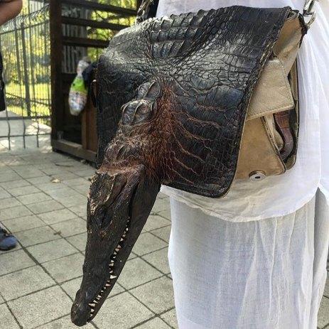 Borsa testa di coccodrillo