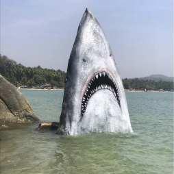 Jimmy Swift ha dipinto questa roccia per farla sembrare uno squalo