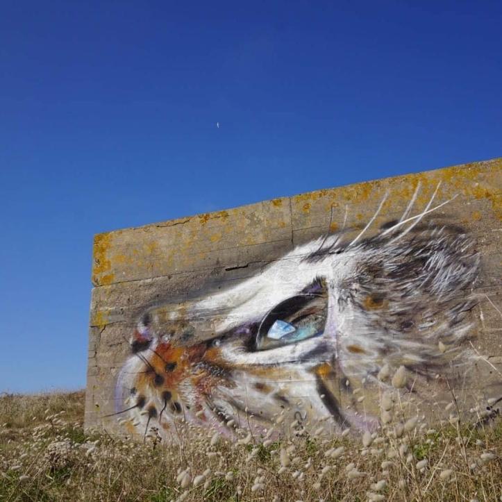 Näutil @Cotentin, France