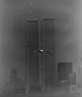 Twin Towers nel 1979