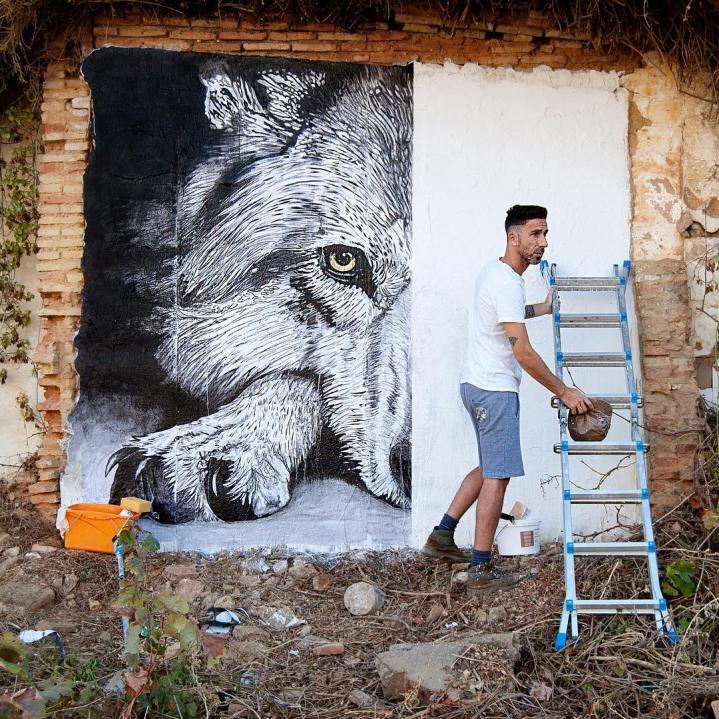 Wild Welva @Huelva, Spain
