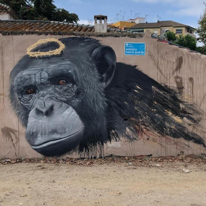 Konestilo @Huelva, Spain