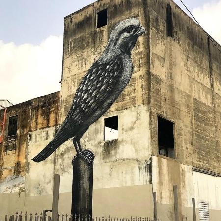 ROA @Humacao, Puerto Rico