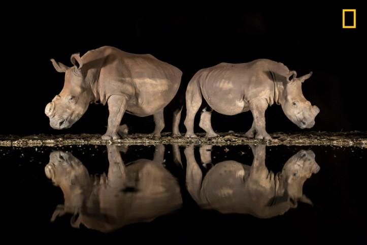 Alison Langevad / 2018 National Geographic Photo Contest