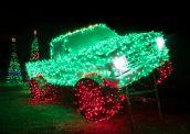 Jesse Rieser, Merry Monster Truck, New Braunfels, TX, 2016. Courtesy of the artist