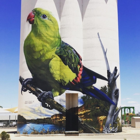 Jimmy DVate @ Waikerie, Australia