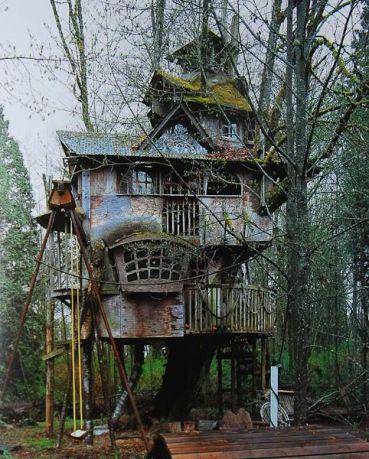 Casa sull'albero, Redmond
