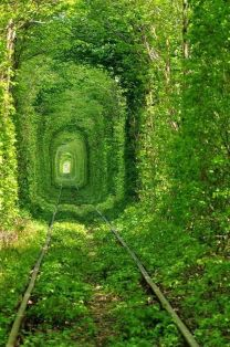 Il tunnel dell'amore in Ucraina