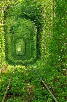 Il tunnel dell'amore in Ucraina