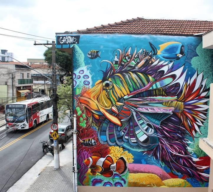 Gatuno @Sao Paulo, Brazil
