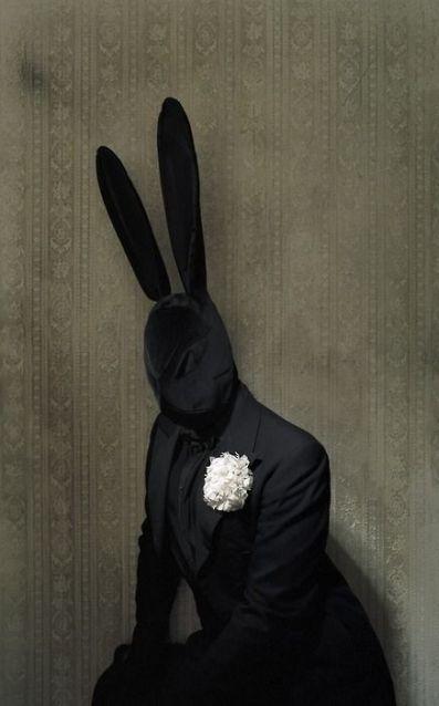 Black Bunny by Matthu Placek