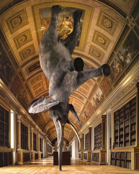 French artist Daniel Firman started his balancing Elephant series, named Nasutamanus, in 2008