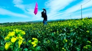 Spring Dance - Ambu-Picci Production