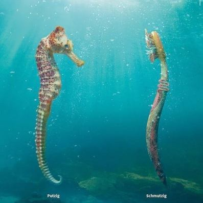 """Campaign from the Swiss OceanCare office about the plastic soup in the Oceans of the world. A toothbrush looks like a seahorse, but it doesn't belong in the ocean. It is """"Putzig"""" (cute) versus """"Schmutzig"""" (dirty)."""