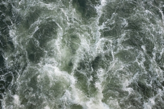 Down the River by Adrian Skenderovic