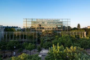 Symbiosia @ Fondazione Cartier, Parigi. Fotografia di Luc Boegly