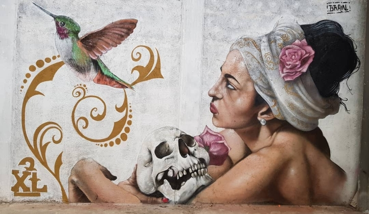 Brain SrCerebro@ Mineral de la Reforma, Mexico