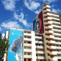 Street art by C215 (sx) e Obey Giant (dx)