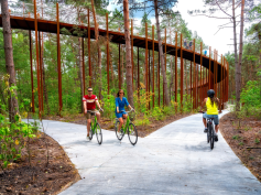 """Cycling Through the Trees"" @ Limburgo, Belgio"