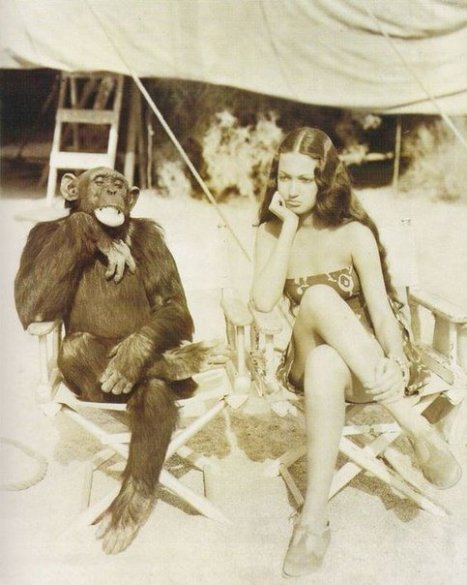 Dorothy Lamour e Jiggs in pausa sul set di Her Jungle Love (1938)