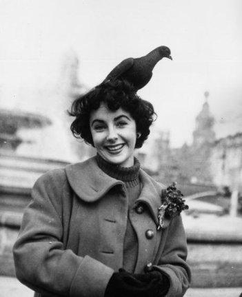 Elizabeth Taylor con un piccione in testa, Londra, 1948