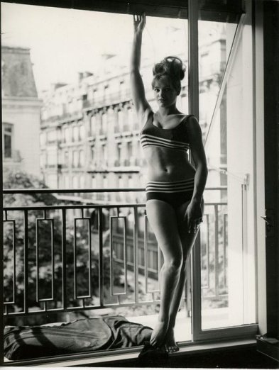 Sylvia Sorrente