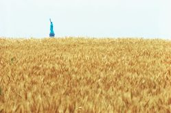 Agnes Denes's Wheatfield—A Confrontation involved the artist planting and harvesting two acres of wheat on the Battery Park landfill in Manhattan during the summer of 1982Commissioned by Public Art Fund. Courtesy the artist and Leslie Tonkonow Artworks + Projects