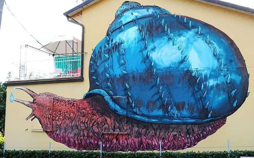 Bastardilla @ Pian Di Venola, Italy
