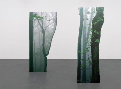 """""""Green growth"""" (2014) by Katja Novitskova"""