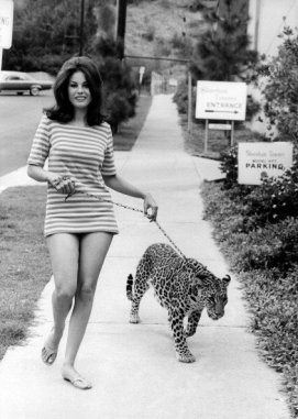 Lana Wood & Leopard, 1969