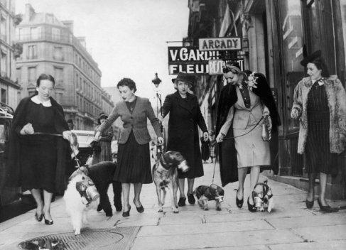 Parigine portano a spasso i loro cani muniti di maschera antigas. 1939
