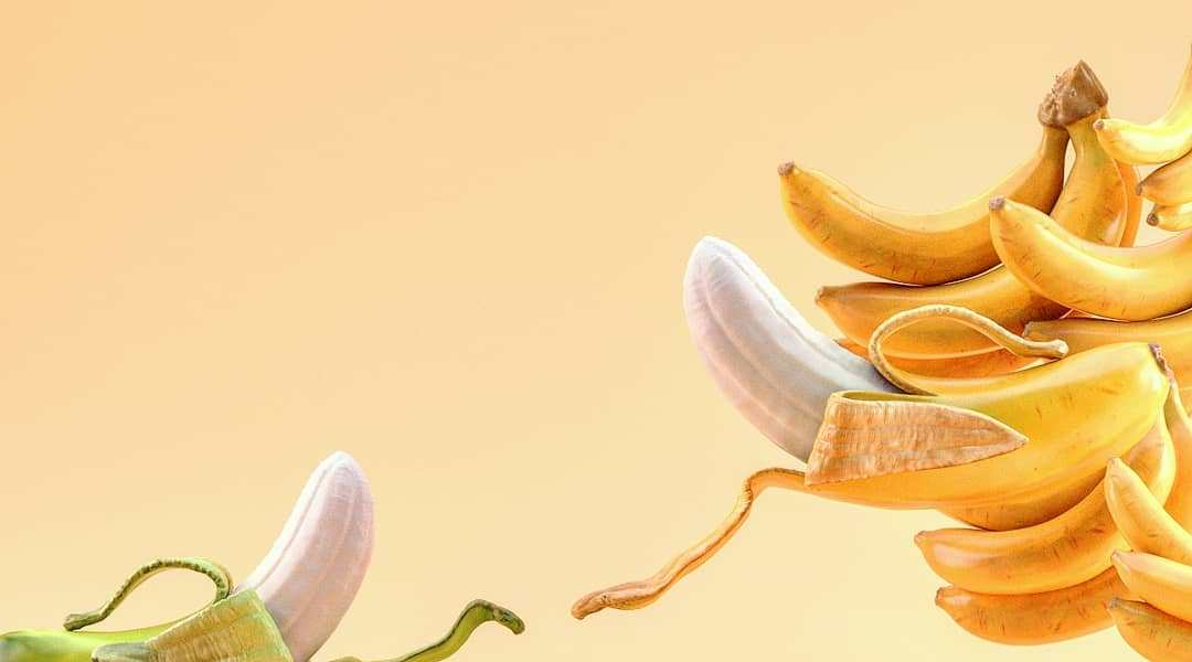 The creation of Banana by Farid Ghanbari