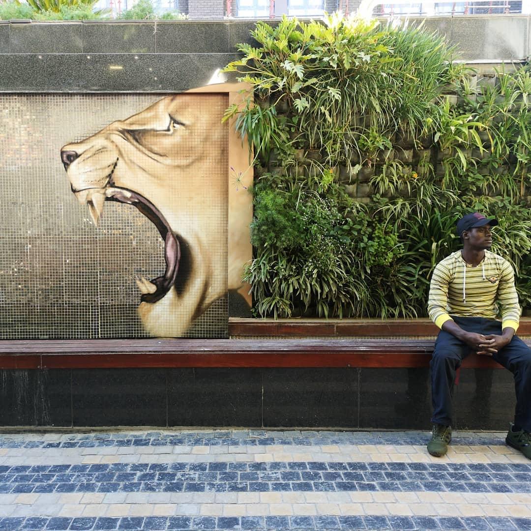 Falko one @ Johannesburg, South Africa
