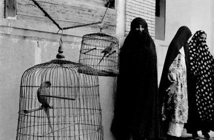 Inge Morath - Iran. Shiraz. 1956. Veiled Muslim women and caged cockatoos (wives of one man)