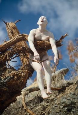 Jill Orr, Bleeding Tree, 197911 photos60 x 76cm (framed, each), courtesy l'artista e PAC Milano