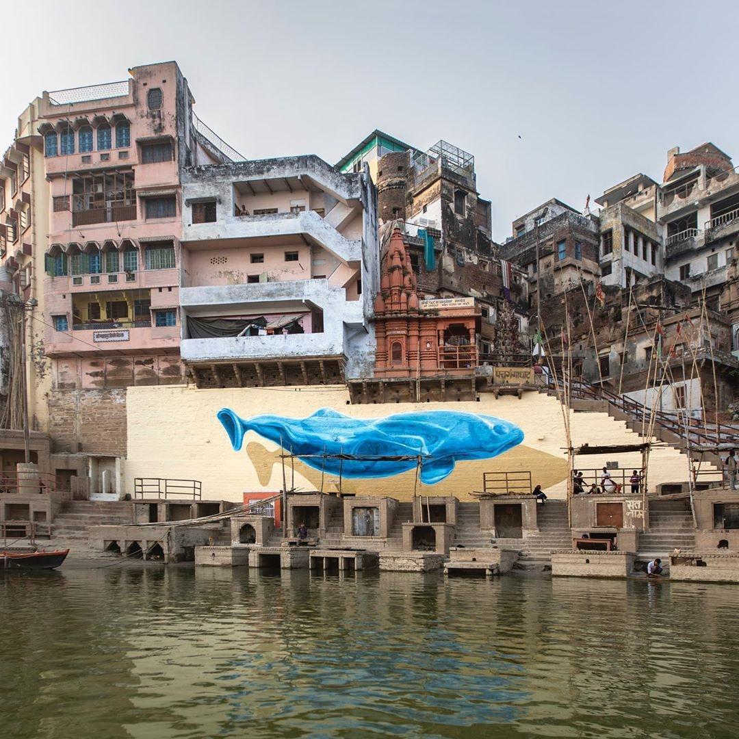Nevercrew @ Varanasi, India