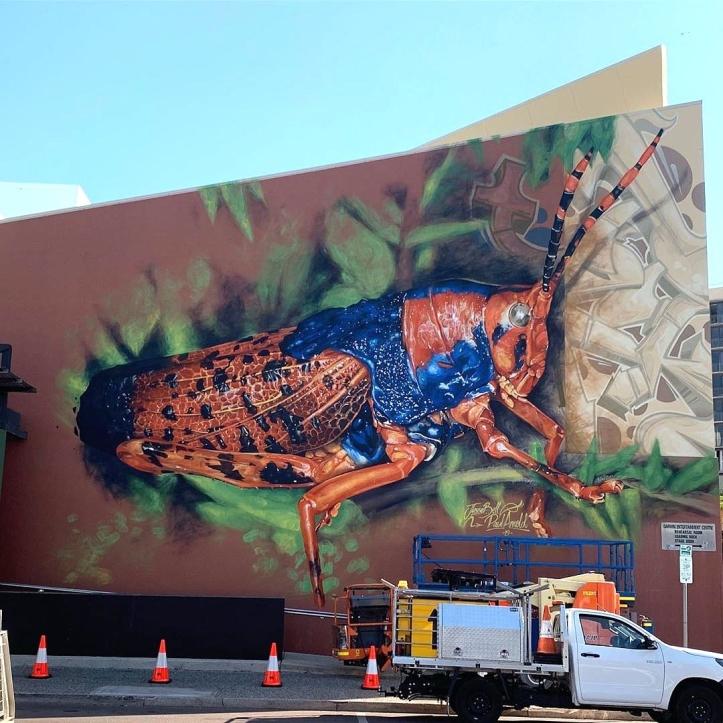 Tikls @ Darwin, Australia