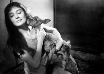 Audrey Hepburn e il suo cerbiatto domestico, 1958