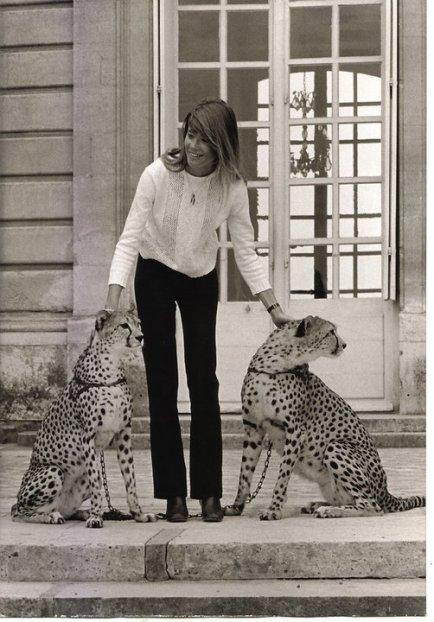 Francoise Hardy fa amicizia con dei ghepardi