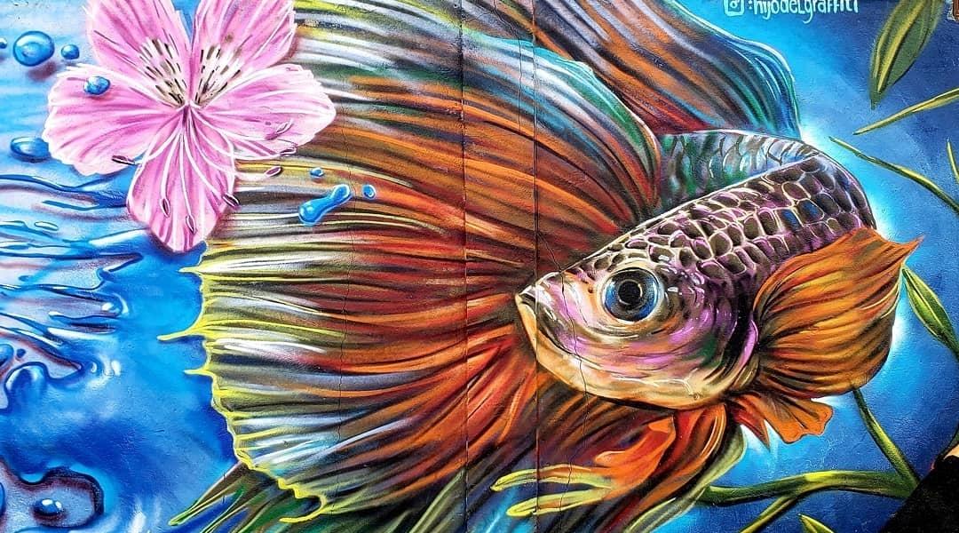 Hijo Del Graffiti @Calama, Chile