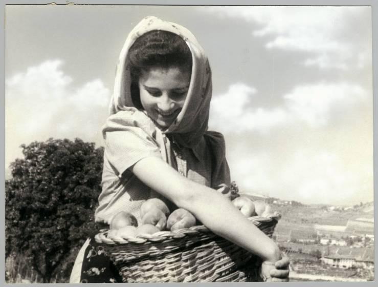 Raccoglitrice di pesche, 1940, courtesy Touring Club Italiano