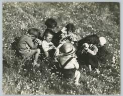 Raccolta dei fiori nella campagna di Cremona, 1953, courtesy Touring Club Italiano