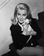 Ann-Margret tiene un gattino in una foto promozionale per il suo film del 1964 Kitten With a Whip
