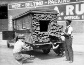 """Avvisati dall'odore di una bottiglia rotta di liquore, gli agenti federali ispezionano un """"camion di legname"""". Los Angeles, 1926"""