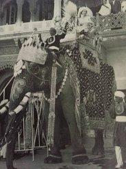 La regina Elisabetta II cavalca un elefante in India