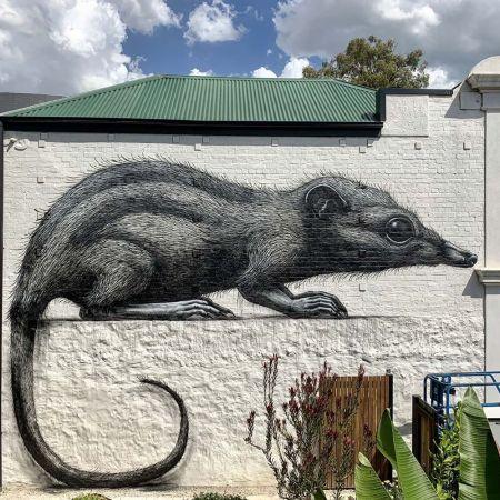 ROA @ Melbourne, Australia