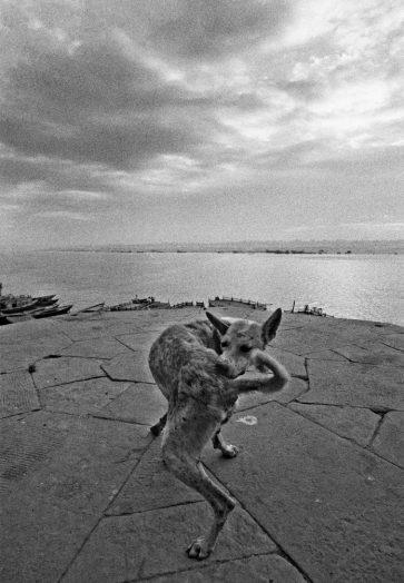 Varanasi, 1972 © Ferdinando Scianna
