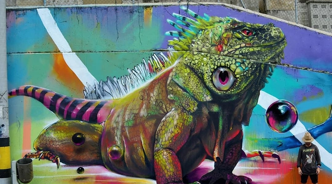 Gris One @ Medellin, Colombia