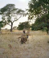 Mane (Senegal 2019) © Karoline Hjorth and Riitta Ikonen