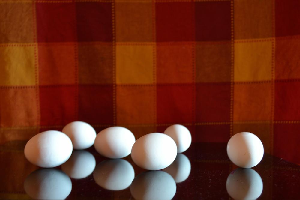 Casa amara casa - Natura erotica - Il tremito delle uova
